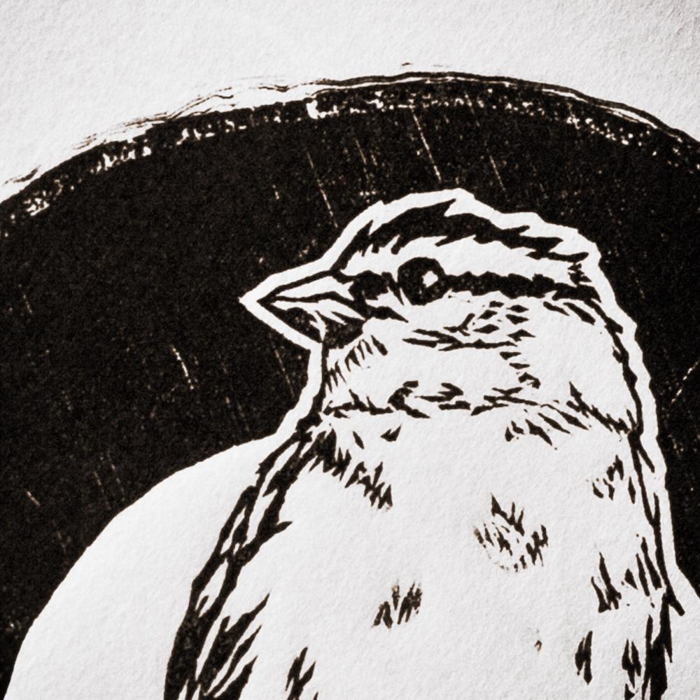 Sparrow_WoodcutPrint_close-up_StanleyLeonard