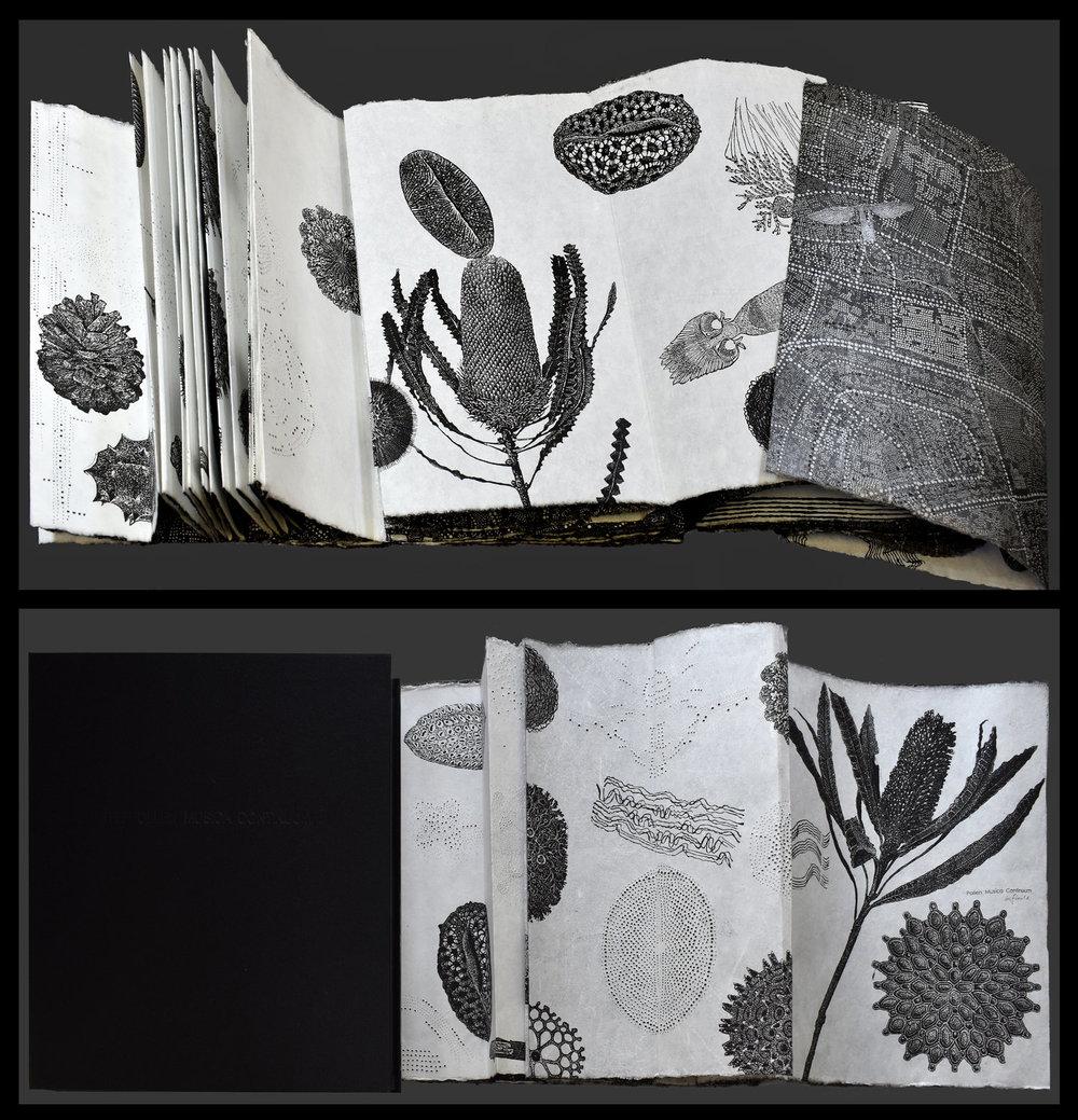 dianne+lewis+-+Fogwell_Dianne_Pollen+Musica+Continumm+-+infinite_linocut_artists'+book+composite.jpg