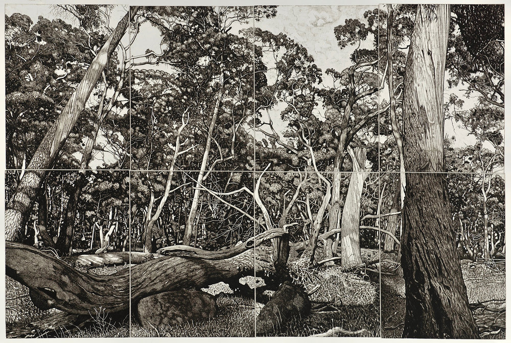 DAVID FRAZER - AUSTRALIA