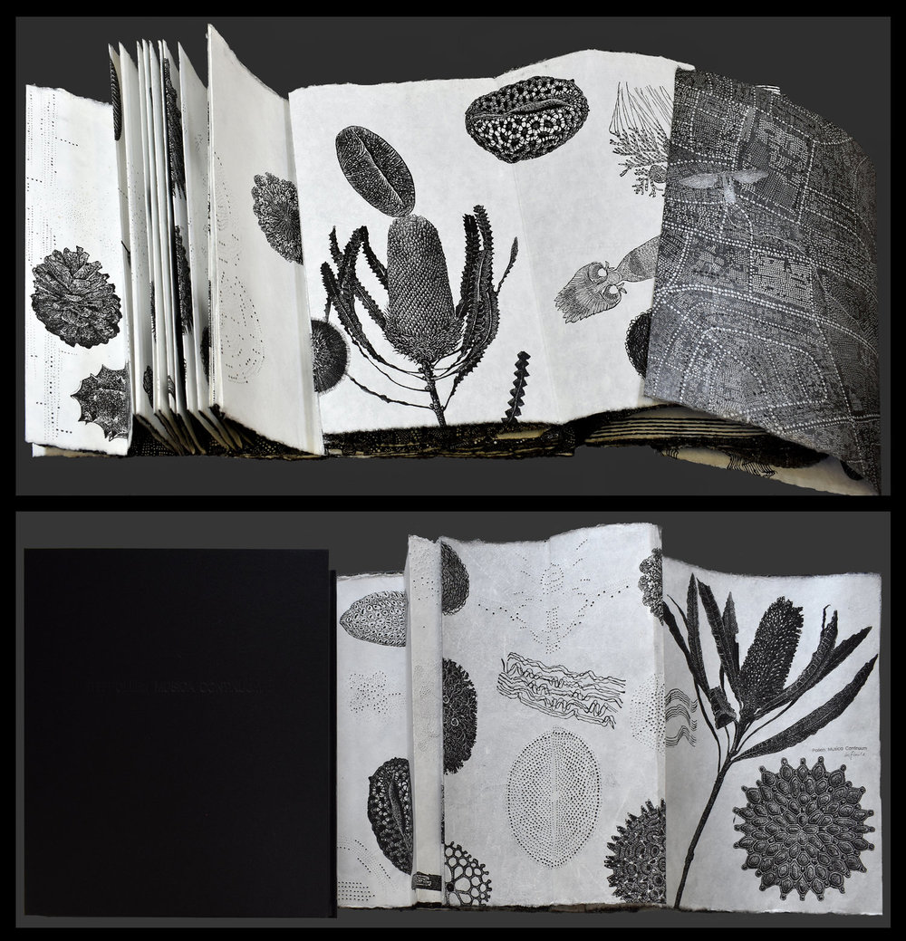 Image:  Pollen Musica Continuum - infinite  completed, Dianne Fogwell, linocut, perforation - artists'book, completed 2018