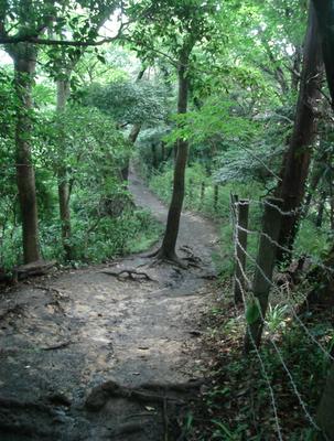 Daibutsu_Hiking_Course_omamori.png