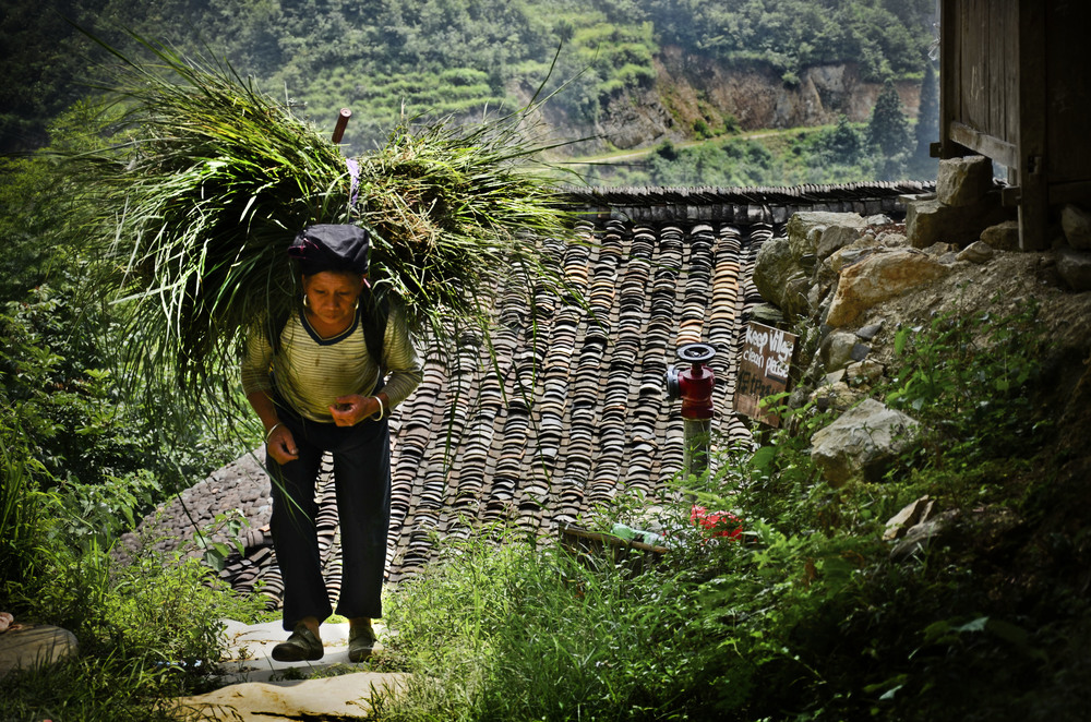 Woman carrying rice - Portrait