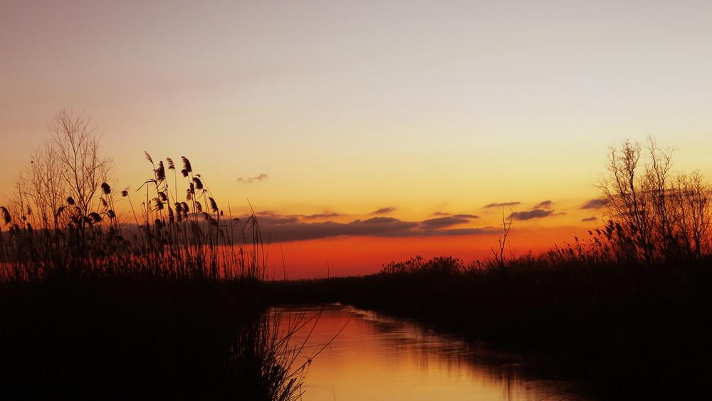 La pescuit de știucăîn Delta Dunării