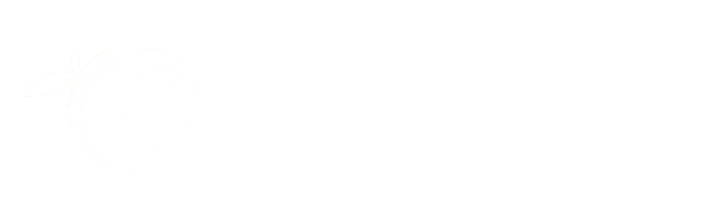 Self-serve-solution-logo2.png