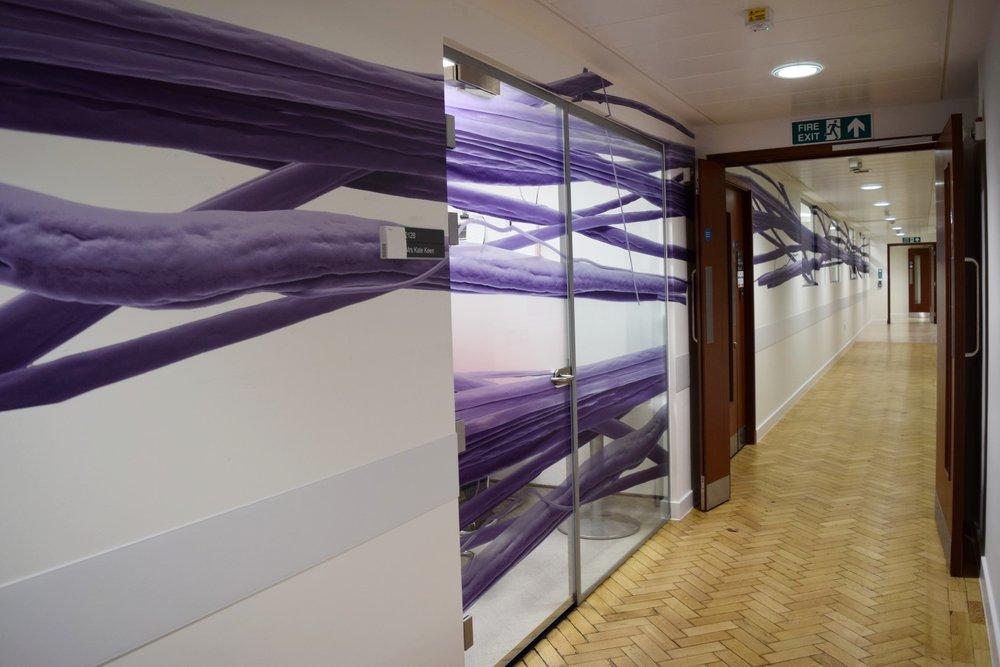 Corridor Vinyl Graphics