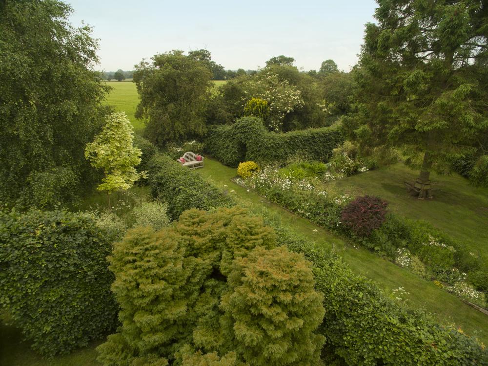 Camomile Cottage Gardens