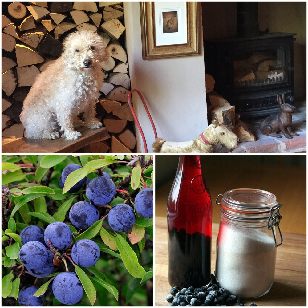 Log Stacking & Sloe Gin making at Camomile Cottage B & B