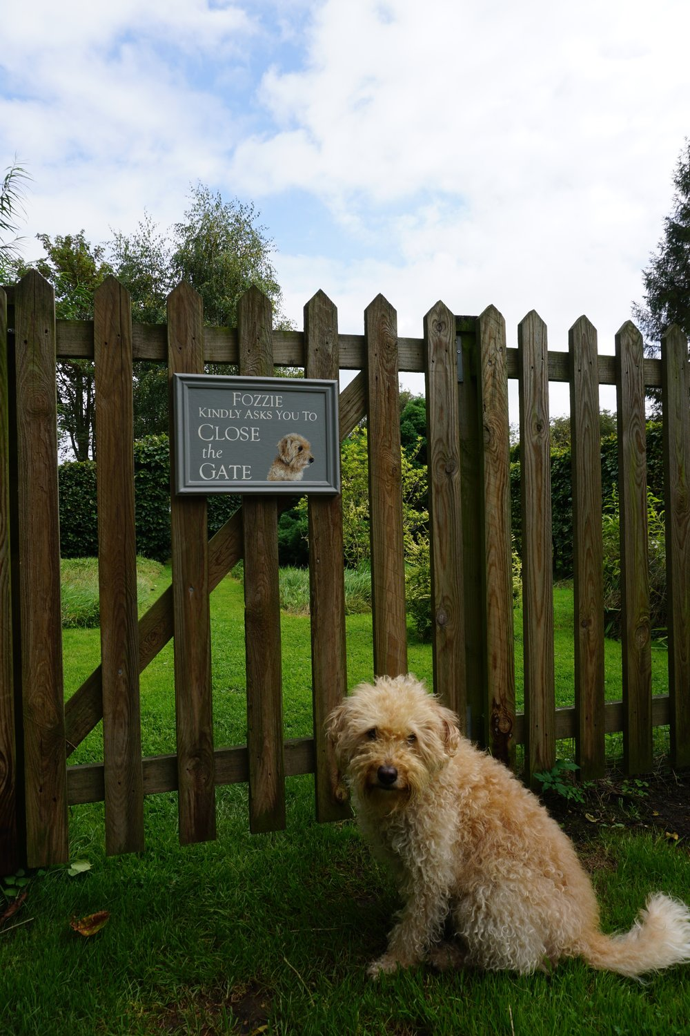 Fozzie's new garden gate sign!