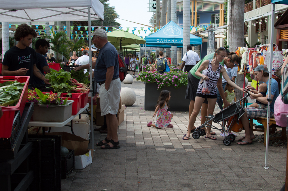 Cayman week 1 (55 of 80).jpg