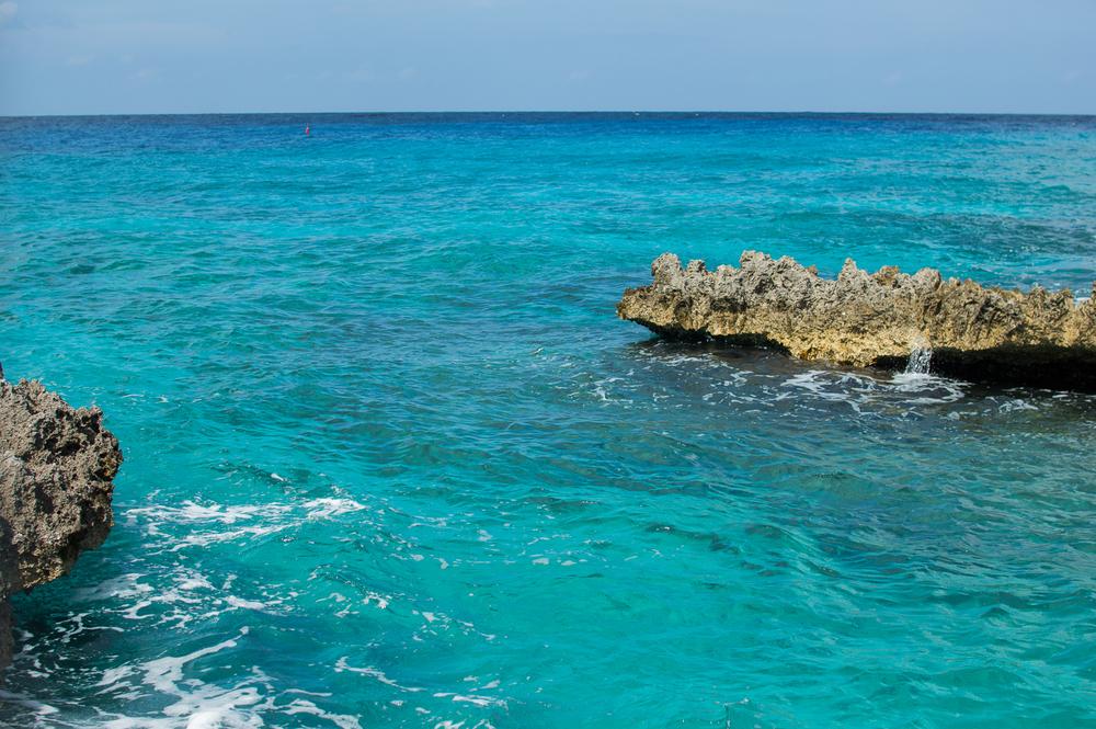 Cayman week 1 (73 of 80).jpg