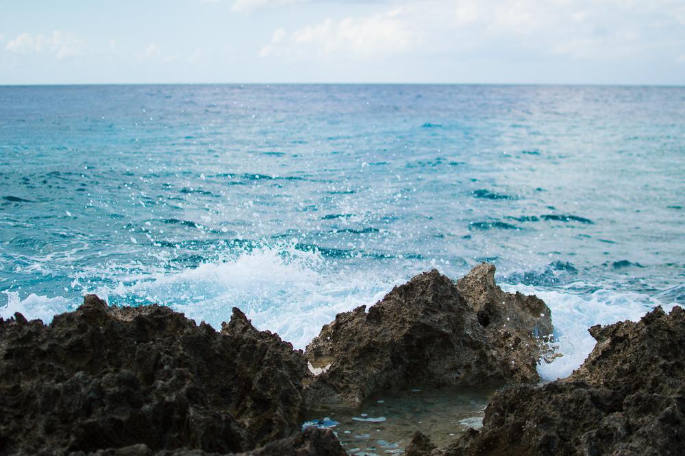 Cayman week 1 (75 of 80).jpg