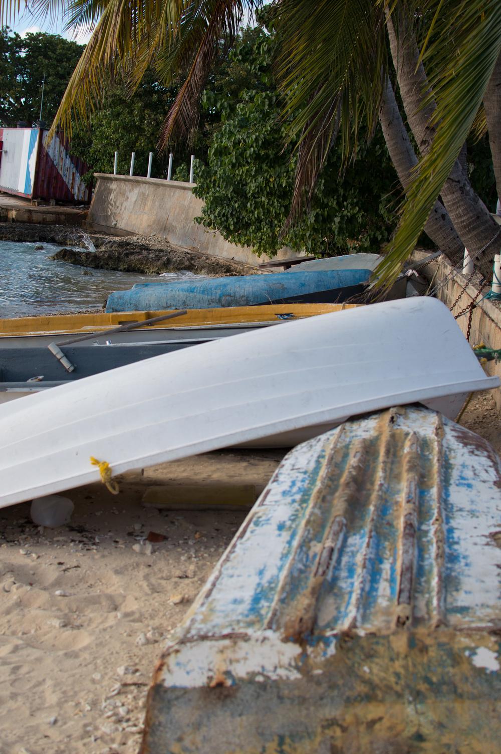 Cayman week 2 (28 of 69).jpg