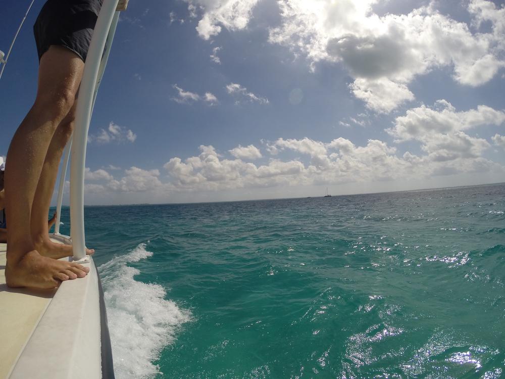 Cayman week 2 (51 of 69).jpg