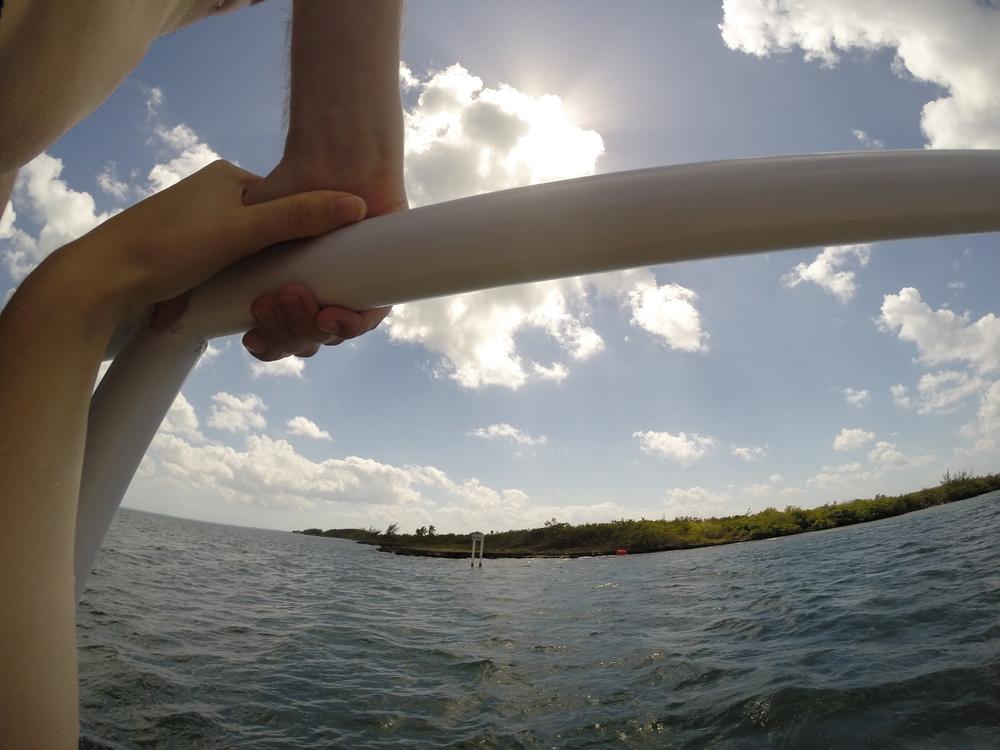 Cayman week 2 (53 of 69).jpg
