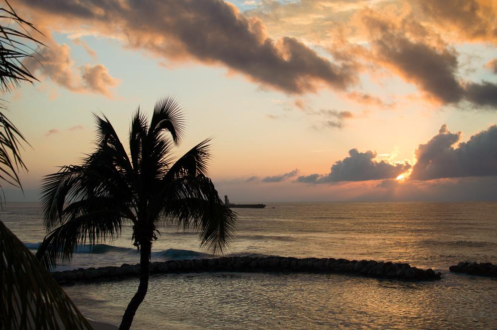 Cayman week 2 (18 of 69).jpg