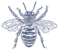 05 FAVICON BEE BLUE.png