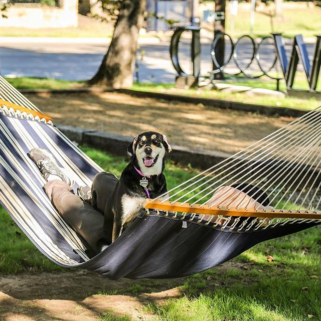 Cooler days were meant for lazy hammock hangs with your best friend.