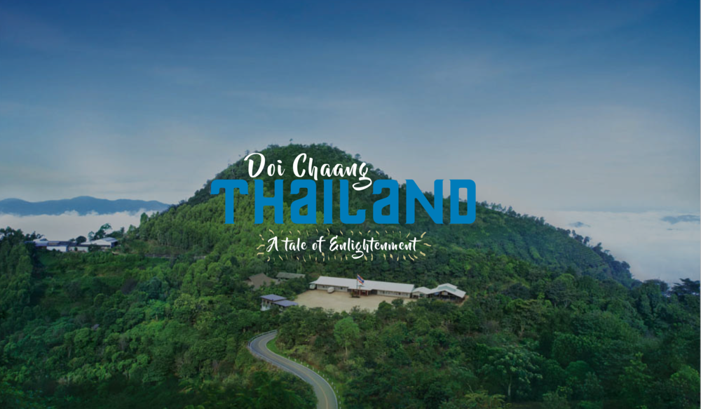 thai Feature-01.png