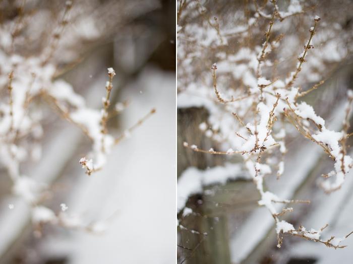 snow-day-portrait_0396