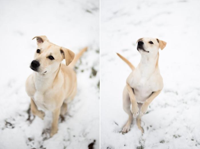 snow-day-portrait_0401