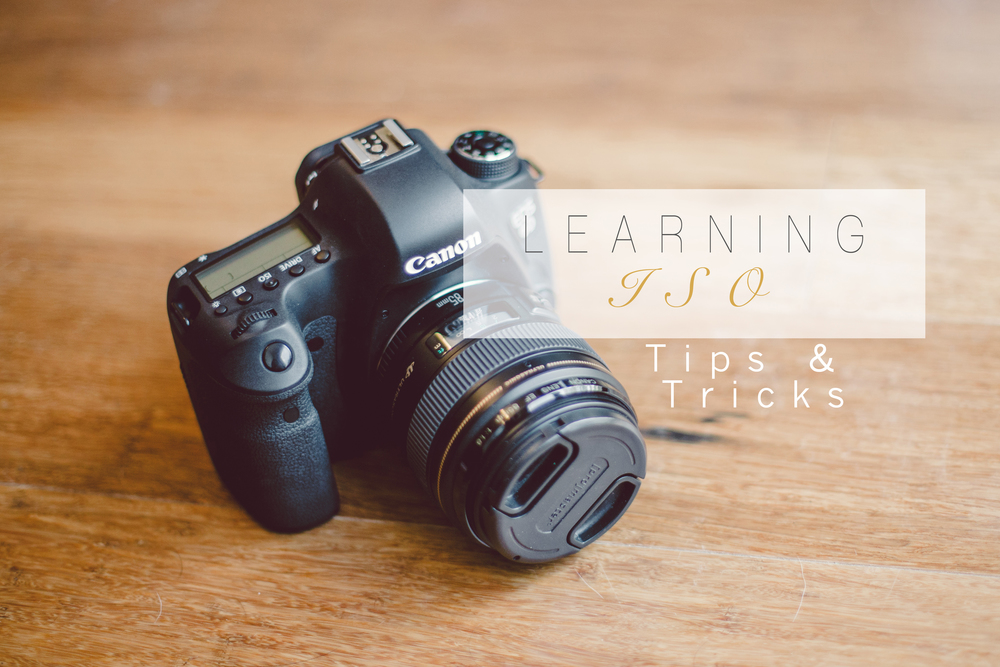 learning-DSLR-ISO