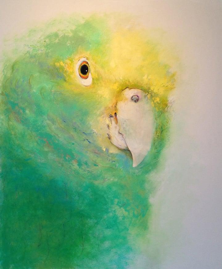 Parrot, 2013