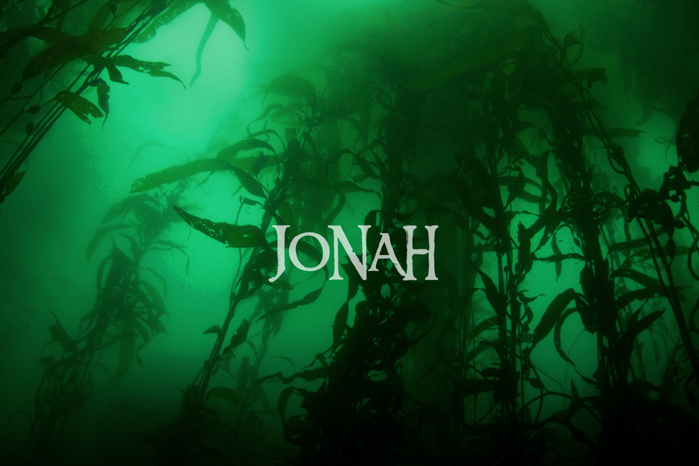 To the Depths – 1:16-2:10 -