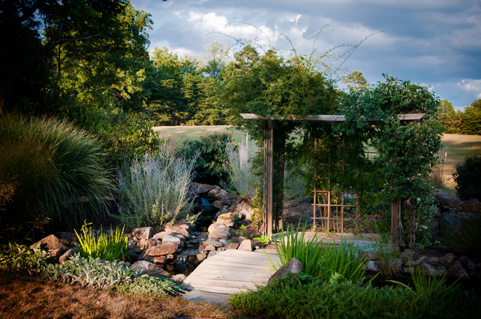 About the Artist Water Garden Designs by Tharpe