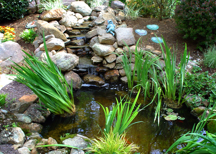 Tharpe Watergardens001.JPG