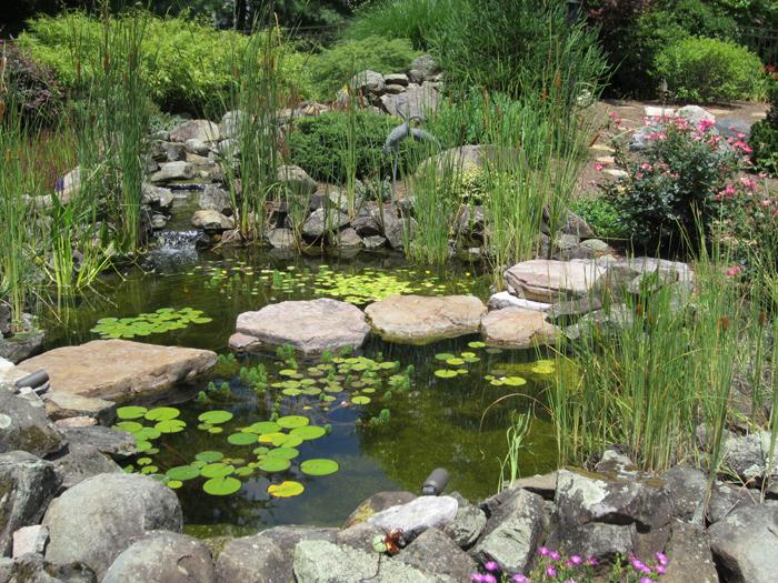 Tharpe Watergardens011.JPG