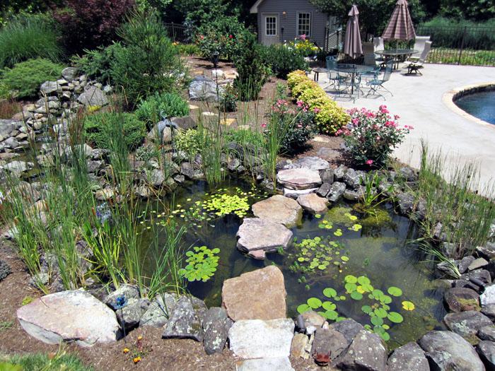 Tharpe Watergardens012.JPG