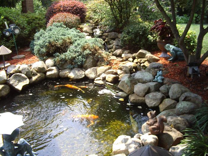 Tharpe Watergardens017.JPG