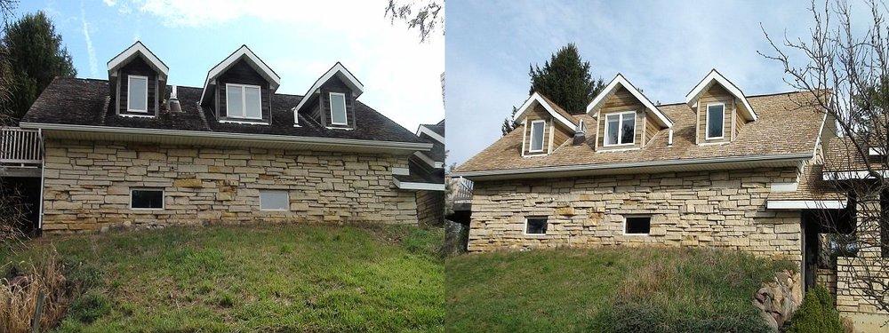 Cedar Back Before & After.jpg