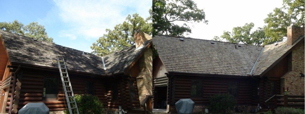 Denise Back Before & After 2.jpg