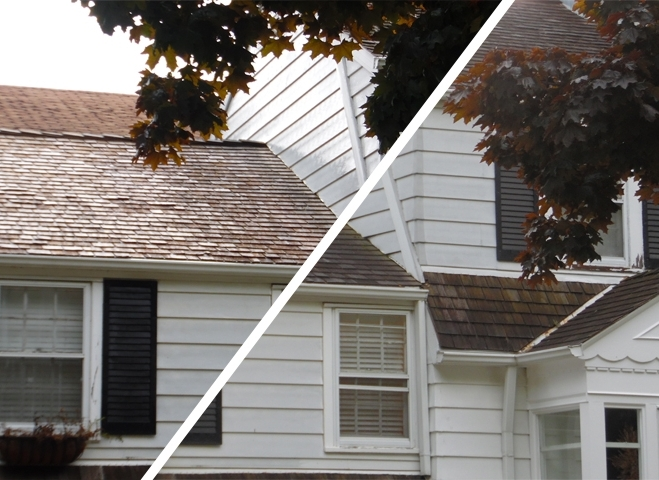 Cedar Roof Split.jpg