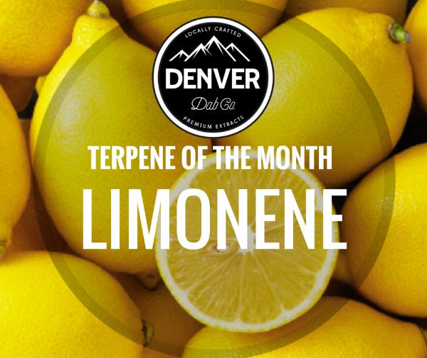 Limonene - Terpene of the Month - Denver Dab Co.