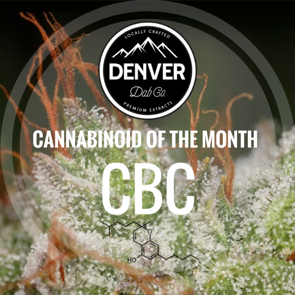 CBC - Cannabinoid of the Month - Denver Dab Co.
