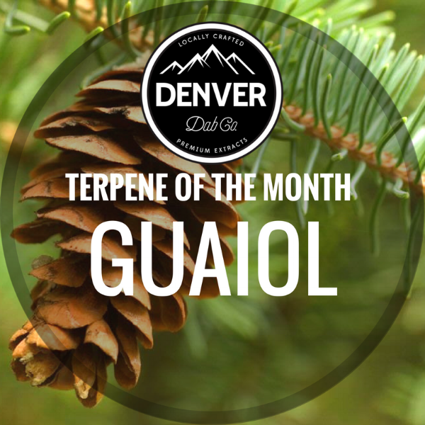 TERPENE OF THE MONTH.png