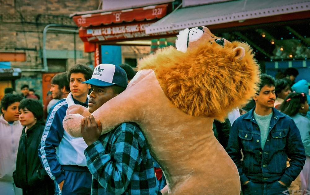 LionsBurden