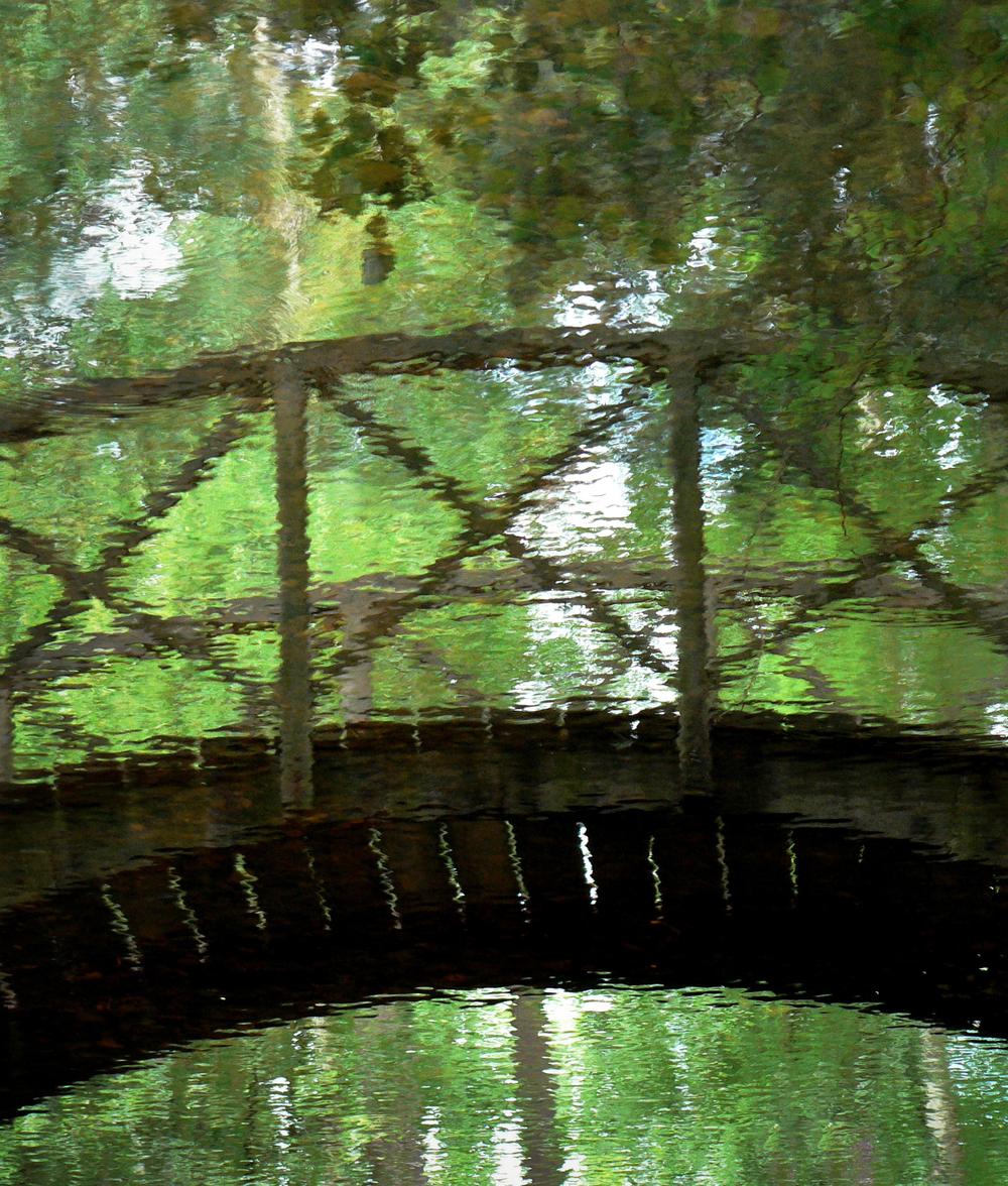 PasD'Avignon