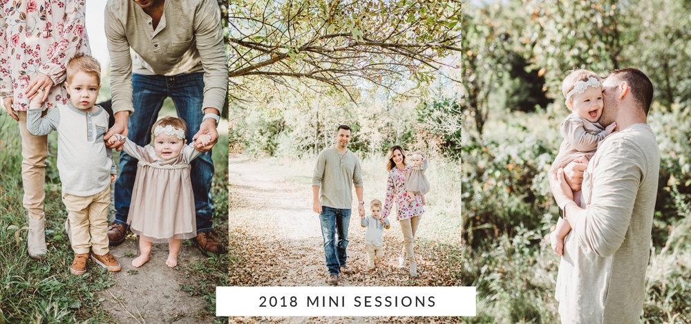 2018-minis-page2.jpg
