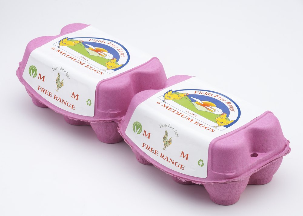 Field Farm Eggs-006421.jpg