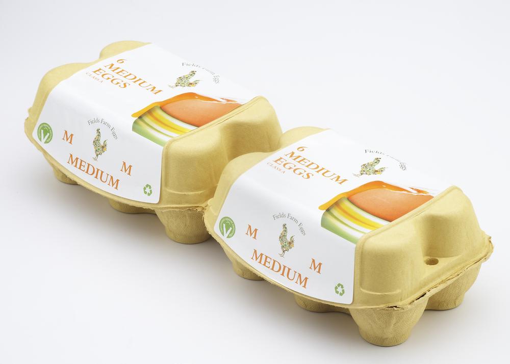 Field Farm Eggs-006418.jpg