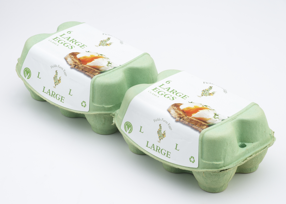 Field Farm Eggs-006419.jpg