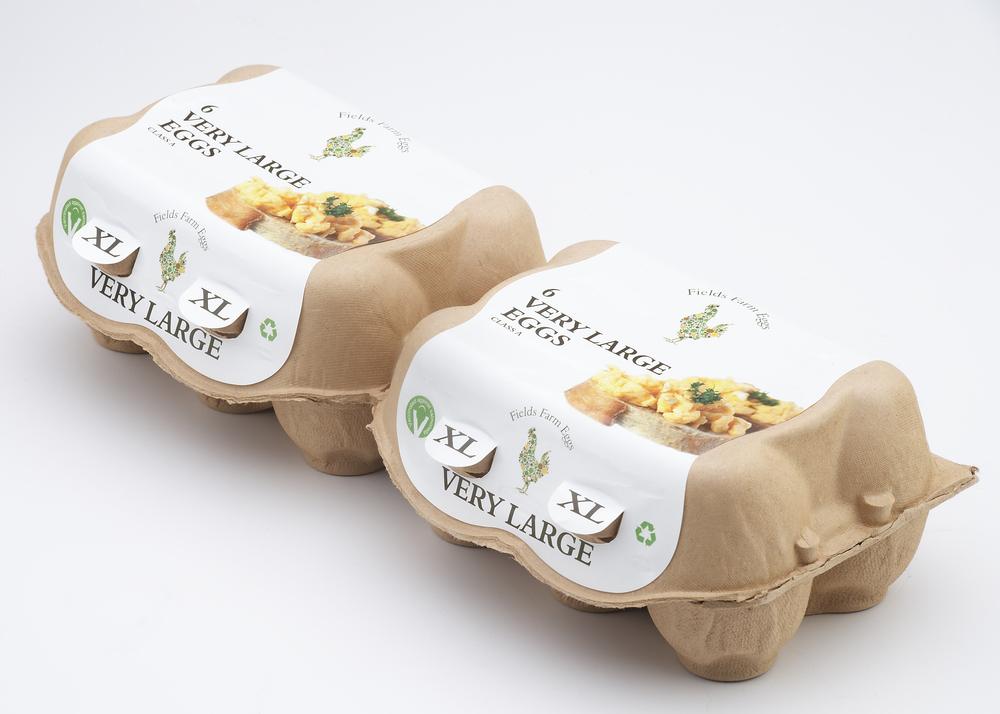 Field Farm Eggs-006420.jpg