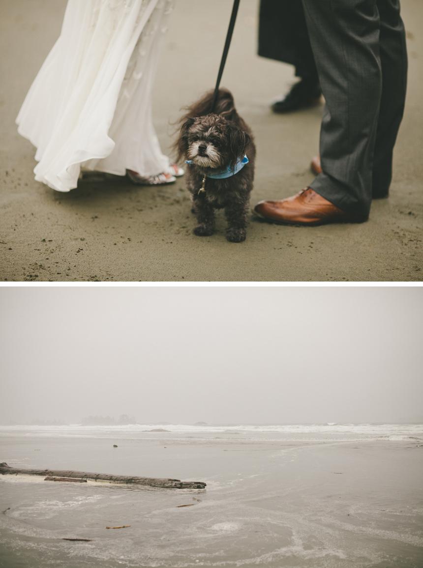 Vancouver Island Elopement Photographers