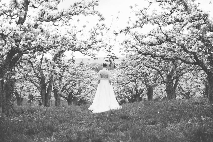 Bottega wedding Photographers