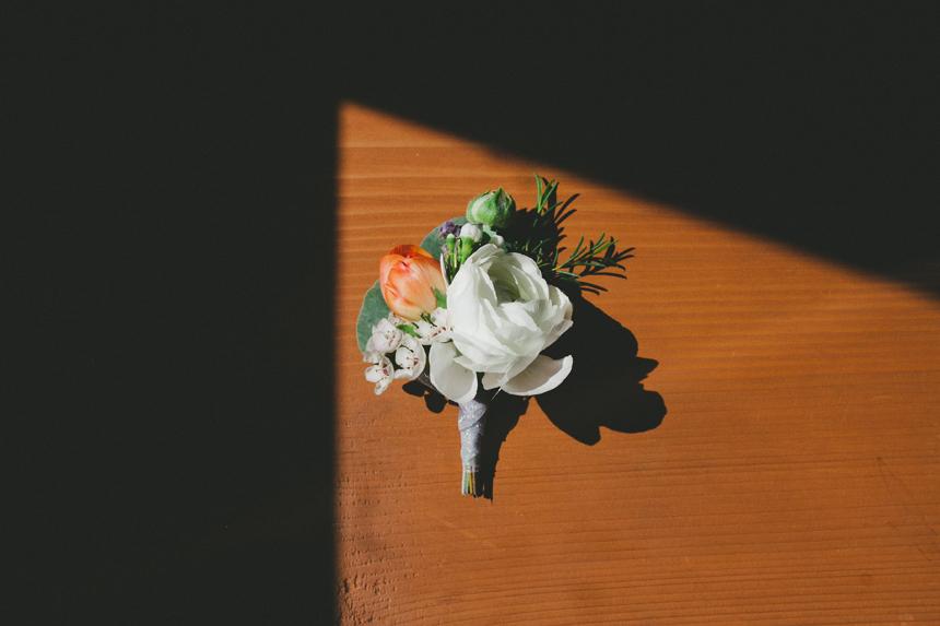 Celsia Florals