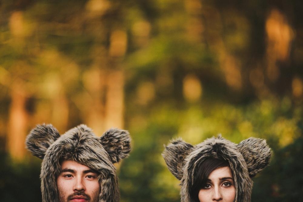 309-bears.jpg