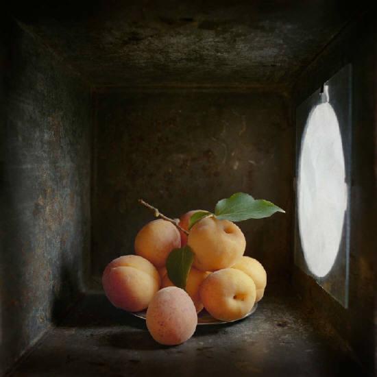 Halliday_Box_C_Apricots.jpg